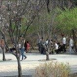 <!--:id-->Pemerintah China Sediakan Taman Khusus Untuk Komunitas Gay <!--:-->