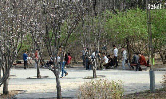 Yuandadu Relics Park di Mudanyuan tempat komunitas gay bersosialita