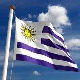 Uruguay Tunda Pengesahan RUU Pernikahan Sejenis