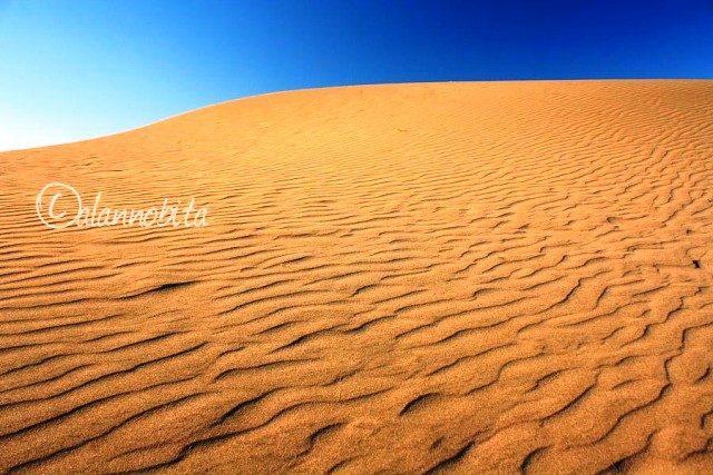 (Foto : alannobita.blogspot.com)
