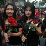 Mawar Dan Pita Merah Waria Surabaya Di Hari AIDS Sedunia