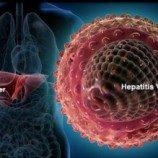 Angka Kematian karena Hepatitis 3 Kali Lebih Tinggi dari HIV-AIDS