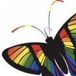 Survei UGM: Pemerintah Belum Lindungi Pekerja LGBT