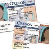 SIM Untuk Individu Non-Biner di Oregon