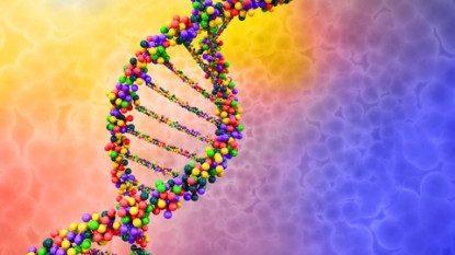 Masih Pentingkah Berpikir LGBT Genetis Atau Lingkungan?