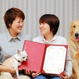 Sebuah Organisasi di Osaka Menawarkan Sertifikat Pernikahan Bagi Pasangan LGBT