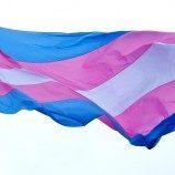 Penelitian Terbaru Ipsos: Etika Sosial Terhadap Individu Transgender di 16 Negara