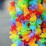 Hawaii Resmi Melarang 'Terapi Penyembuhan Gay' Kepada Anak di Bawah Umur