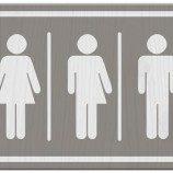 Penelitian Terbaru Menunjukkan Akar Genetika Identitas Transgender
