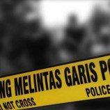 Berantas FPI, Polisi Kerja Profesional