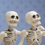 Disparitas Kesehatan Tulang Berdasarkan Orientasi Seksual