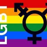 Kontroversi Publik Tentang LGBT di Indonesia, Hasil Survei Nasional SMRC 2016-2017