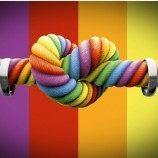 Sebuah Keputusan Pengadilan Telah Memerintahkan 20 Negara Untuk Mengadopsi Hukum Kesetaraan Pernikahan