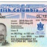 British Columbia Sekarang Mengakui Gender 'X' Pada SIM Dan Akta Kelahiran